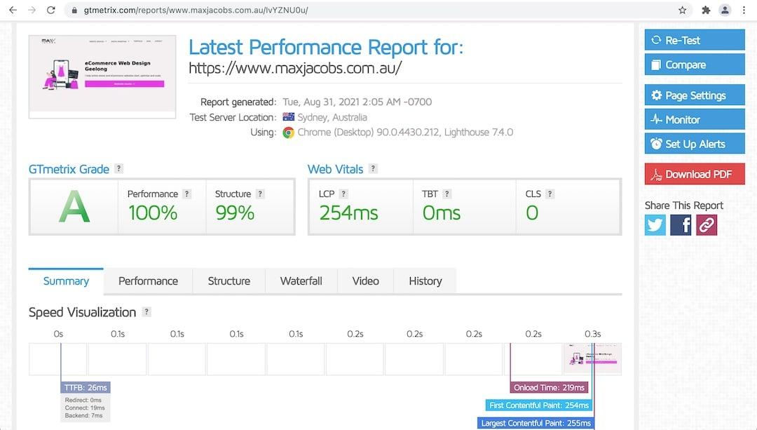 GT Metrix - 100% Performance Score