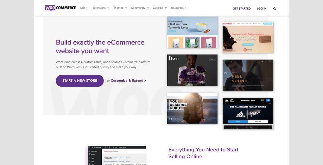 Reasons to choose WooCommerce over Shopify